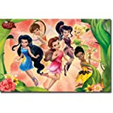 (22x34) Disney Fairies (Group, Rosettas Garden Party) Art Poster Print