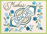 img - for Muchas Gracias Glitz Thank You Notes book / textbook / text book