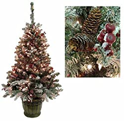 5' Pre-Lit Frosted Hawthorne Fir Potted Artificial Christmas Tree - Clear Lights