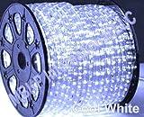 COOL WHITE LED Rope Lights Auto Home Christmas Lighting 10 Meters(32.8 Feet)