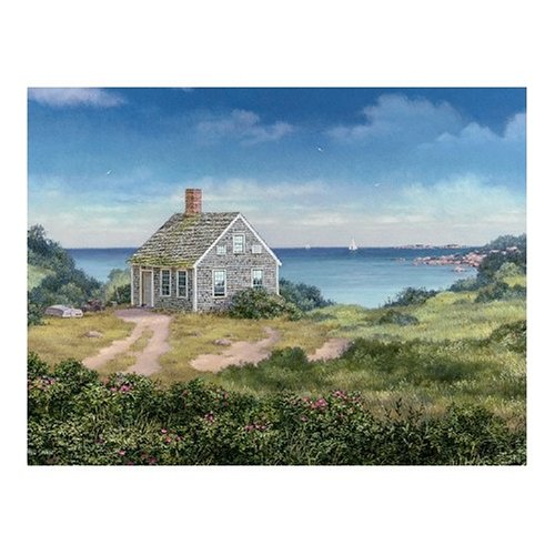 Cheap White Mountain Cottage Cove Jigsaw Puzzle 1000pc (B0009SRZQA)