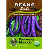 Organic Heirloom Royalty Purple Bush Beans S
