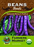 51SWjIQPMjL. SL160  Organic Heirloom Royalty Purple Bush Beans Seeds