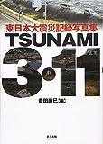 TSUNAMI3��11: ��������̺ҵ�Ͽ�̿���