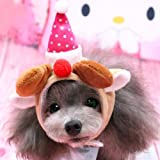 Alfie Pet By Petoga Couture - Qeno Deer Hat Party Costume (for Small Dogs & Cats) - Color: Brown, Size: Medium