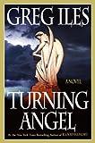 Turning Angel: A Novel