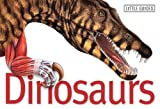 Dinosaurs (Little Guides)