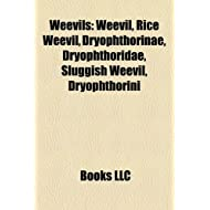 Weevils: Belidae, Curculionidae, Mountain Pine Beetle, Thousand Cankers Disease, Oxycorynini, Maize Weevil, Coffee...