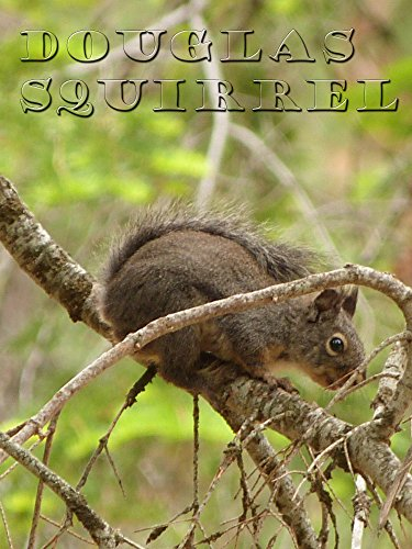 Douglas Squirrel on Amazon Prime Instant Video UK