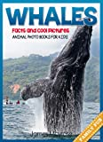 Whale Facts and Cool Pictures. Animal Photo Books for Kids.