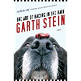 Art Of Racing In The Rainby Garth Stein