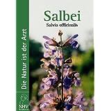 Salbei: Salvia officinalis. Das Buch zur Heilpflanze des Jahres