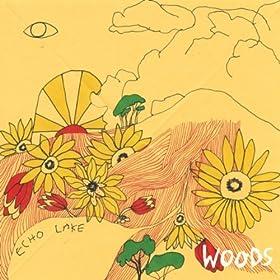 At Echo Lake: Woods