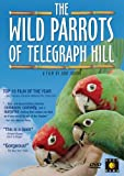 Wild Parrots of Telegraph Hill [DVD] [2005] [Region 1] [US Import] [NTSC]