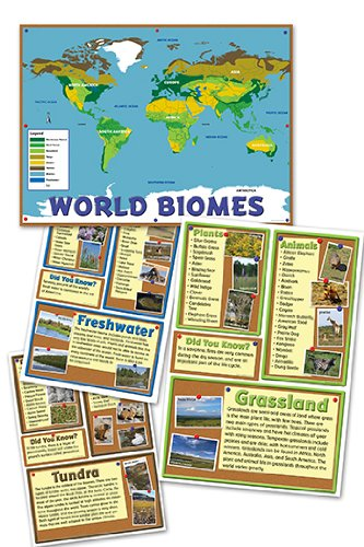 biomes worksheets. Black Bedroom Furniture Sets. Home Design Ideas