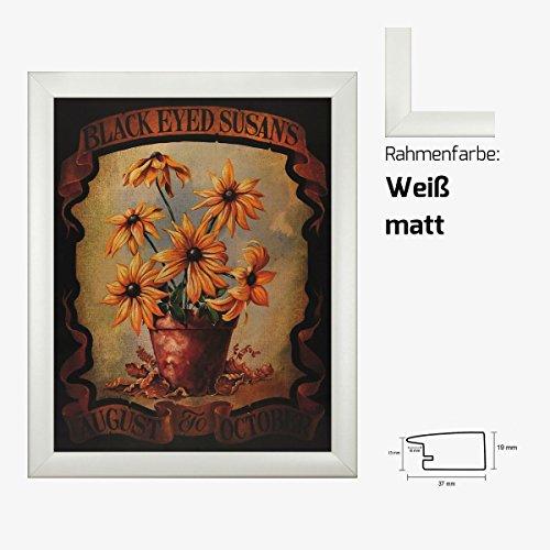Kunstdruck Black Eayed Susans August do October Sonnenblumen in Vase gemalt 40 x 50 cm mit MDF-Bilderrahmen Pisa & Acrylglas reflexfrei, viele Farben zur Auswahl, hier Weiß matt