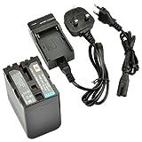 DSTE® NP-QM91D Rechargeable Li-ion Battery + Charger DC01U for Sony NP-QM91D, NP-QM91, NP-QM90, CCD-TRV118, CCD-TRV128, CCD-TRV138, CCD-TRV228, CCD-TRV308, CCD-TRV318, CCD-TRV328, CCD-TRV338, DCR-DVD100, DCR-DVD101, DCR-DVD200, DCR-DVD201, DCR-DVD300, D