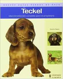 Teckel. Nuevas guias perros de raza (Nuevas Guias: Perros