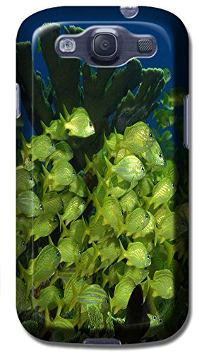 Top Quality Phone Accessories Under Sea World Beautiful Colorful Fishs Clean Water Special Design Cell Phone Cases Covers For Samsung Galaxy S3 I9300 No.2