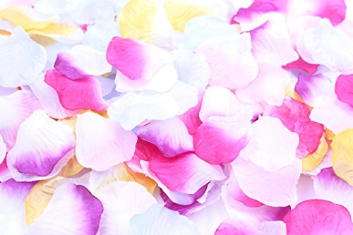 1200 piece shower flower flowers petal set / happiness wedding beautiful parties choose from 12 variations (gradient four seasons).