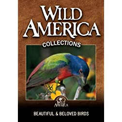 Beautiful and Beloved Birds Collection