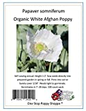 100 Organic White Poppy Seeds Papaver Somniferum. One Stop Poppy Shoppe® Brand.
