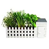 BBTradesales Indoor Allotment Gift Set