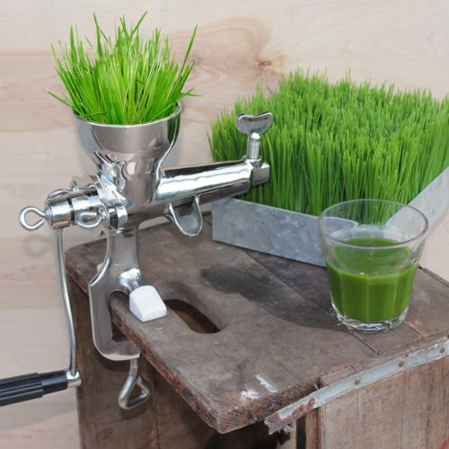 Raw Rutes - Stainless Steel Wheatgrass Juicer