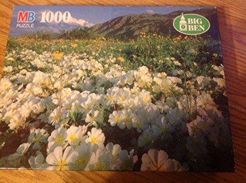 Milton Bradley Big Ben 1000 Piece Puzzle Anzac-borrego Desert State Park Ca. - 1