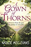 A Gown of Thorns: a bittersweet romance set in rural France (English Edition)