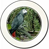 African Grey Parrot Car Tax Disc Holder New Animal, Ref:AB-PA76T