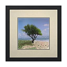 Susho, King Silk Art 100% Handmade Silk Embroidery - Beach in Kauai - White Mat Framed Medium Size 37102WF