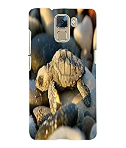 Fuson 3D Printed Turtle Designer Back Case Cover for Huawei Honor 7 - D765
