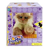 Fur Real Kittenby Hasbro