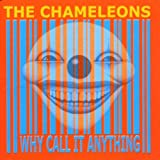 Chameleons - Why Call It Anything?