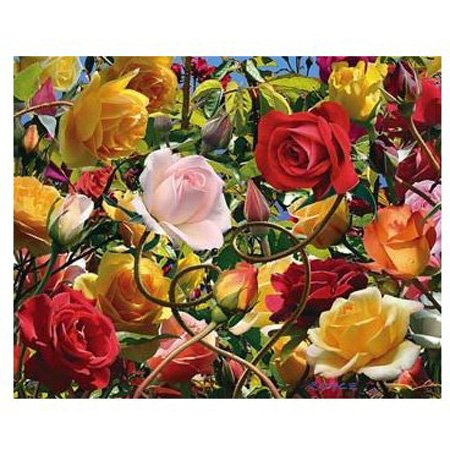 Cheap Hobbico Visual Echo 3D Effect Wild Rose Tango 3D Lenticular Puzzle 500pc S5 (B000YB9WL8)