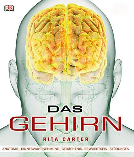 Download Das Gehirn: Anatomie, Sinneswahrnehmung, Gedächtnis ...