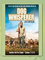 Dog Whisperer - Favorites Season One, Vol.2