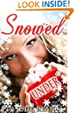 Snowed Under: A Christmas Story