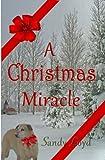 A Christmas Miracle (An uplifting Short Story)