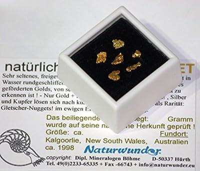 Natürliche Gold - Nuggets, komplett: 1 Gramm ! in Klarsichtdose, Australien