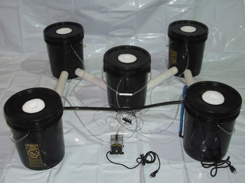 5 Bucket Deep Water Culture Hydroponics Systems