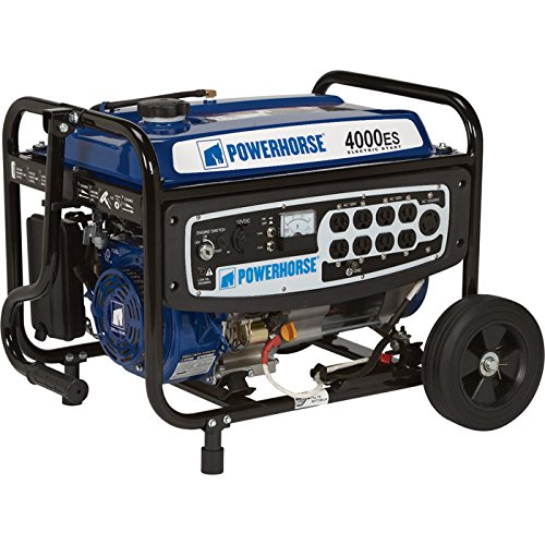 Powerhorse Portable Generator – 4000 Surge Watts, 3100 Rated Watts, Electric Start, Model# DFD4000