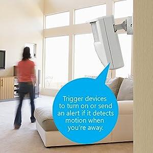 Skylink Wireless Indoor/Outdoor Motion Sensor