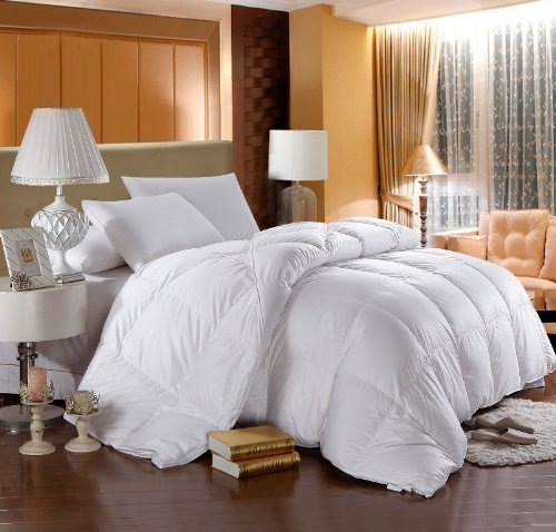 Why Choose LUXURIOUS 800 Thread Count HUNGARIAN GOOSE DOWN Comforter - Queen Size, 750 Fill Power, 5...