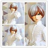 9-10 inch 1/3 High-Temperature Wig Boy Man Short Orange & Silver Gray Hair BJD Doll Wigs with Bangs Fashion Stylish Hair (Color: 1001A-T5808-T1439)