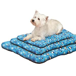 Slumber Pet North Pole Pals Canvas Bed Mat, 26-Inch, Blue