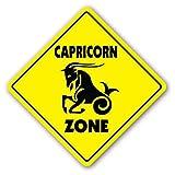 Capricorn Zone Sign Novelty Gift Zodiac Horoscope