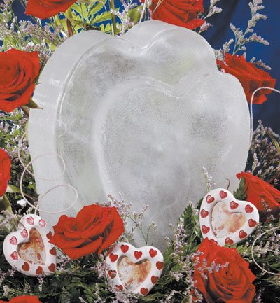 Reusable Heart Ice Sculpture Mold (Ice Sculptures compare prices)