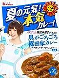 ハウス 夏の元気!本気カレー! AKB48篠田麻里子が考えた「具がごろごろ篠田家カレー」中辛 210g×5個